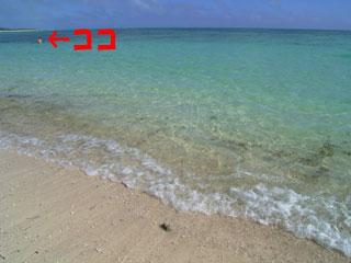 イーフビーチde海水浴