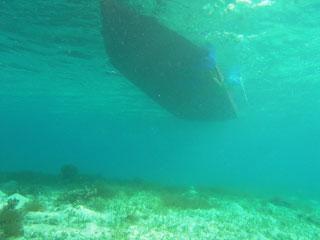 水深はこれくらい