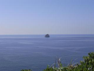 鯨の見える丘