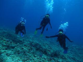 体験ダイビング水中2