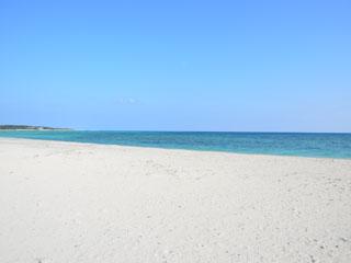 晴れた日のイーフビーチ