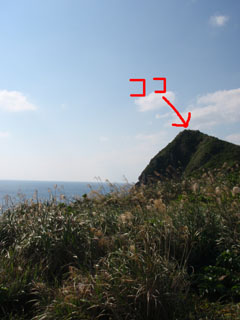 クジラの見える丘