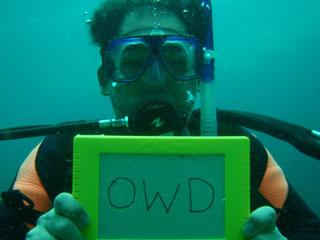 『OWD』