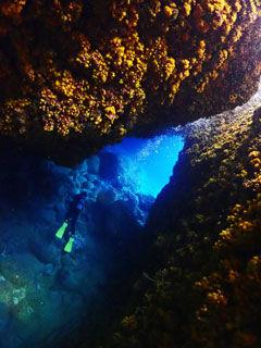 イボヤギ洞窟