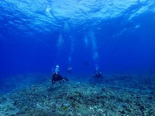 久米島ブルー