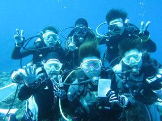 水中集合写真