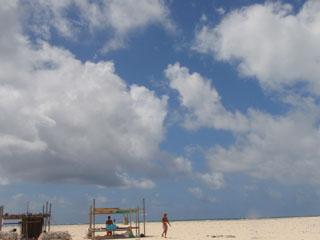 キレイなはての浜