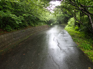 アーラ林道